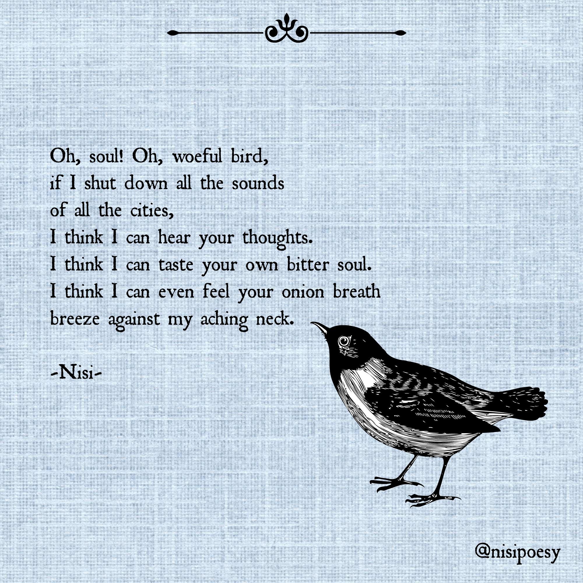 bird-soul