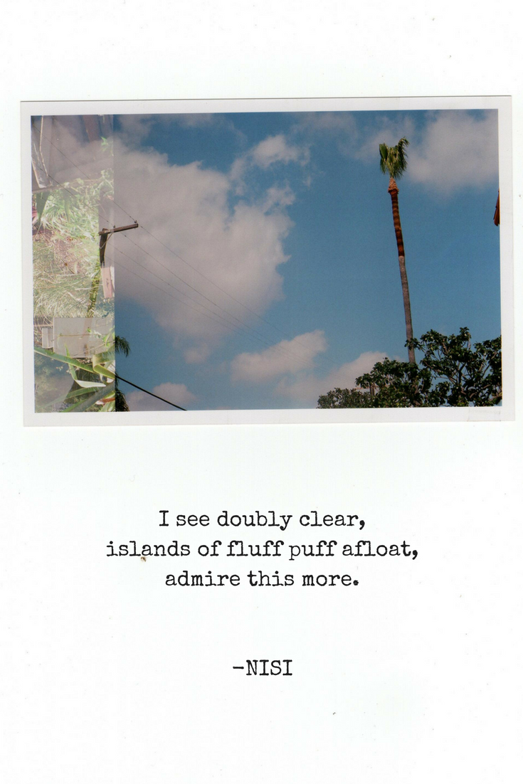Palm Vision | Nisi Poesy | Haiku | Poetry | Art | Travel Blog | Analog Photography
