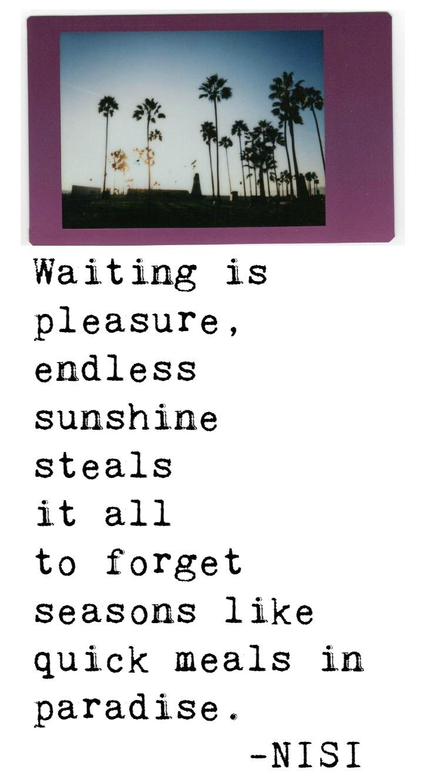 Fool's Paradise | Poetry | Nisi Poesy | Denise Mckenzie | Waiting is pleasure | Endless Sunshine | Paradise